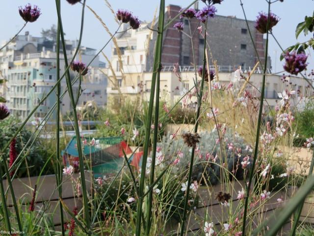 D co maison bassin a flot bordeaux asnieres sur seine 32 maison a louer le bon coin maison - Bassin bois concept asnieres sur seine ...