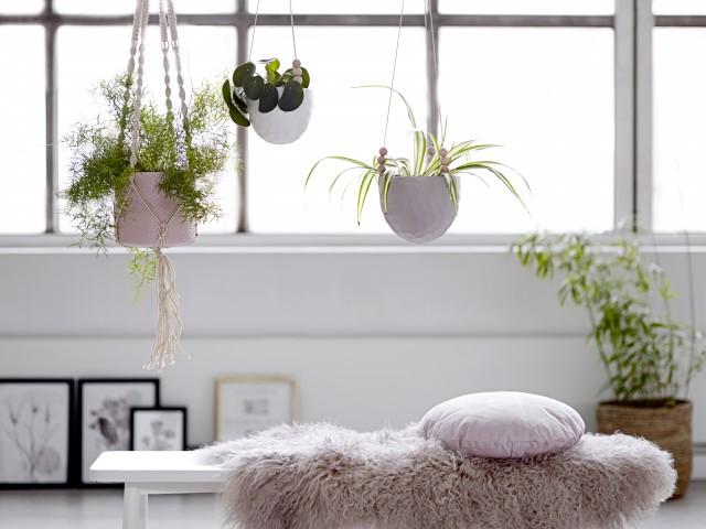 o trouver un porte pot suspendre joli place. Black Bedroom Furniture Sets. Home Design Ideas