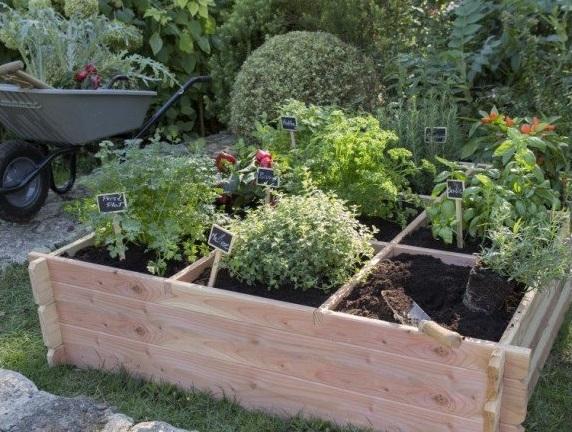 Cultivez votre jardin joli place for Carre jardin potager