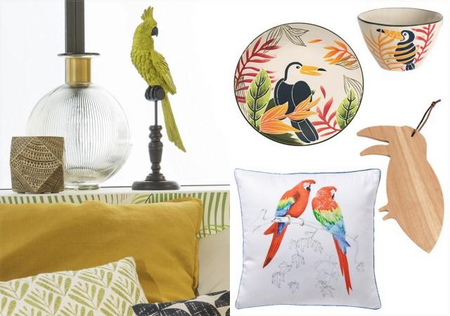 oiseaux de paradis joli place. Black Bedroom Furniture Sets. Home Design Ideas