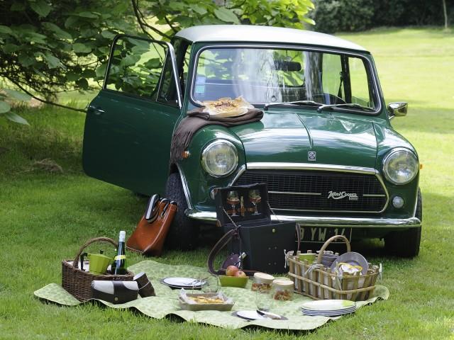 service picnic 025m