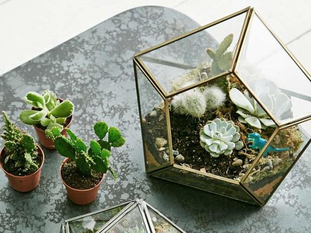 10 id es d co pour vos plantes joli place. Black Bedroom Furniture Sets. Home Design Ideas
