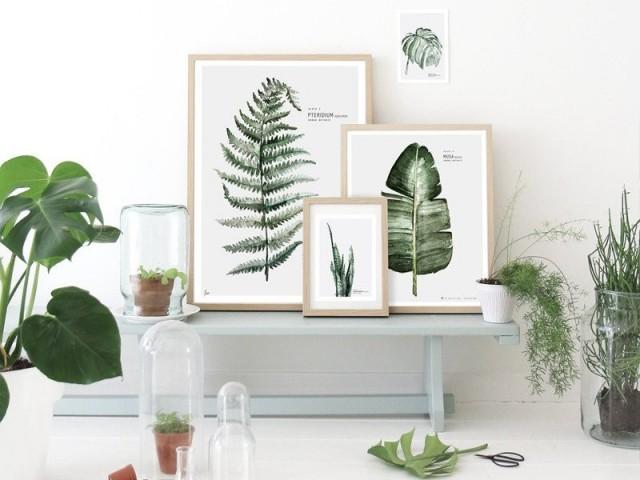 Tendance déco : herbier