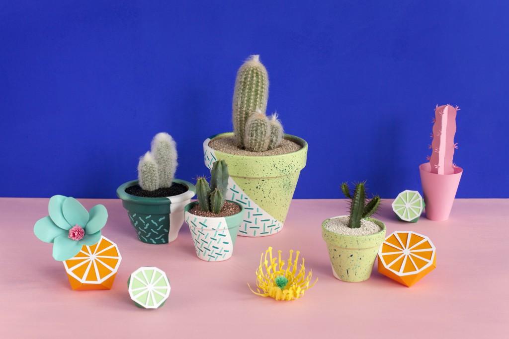 pot à cactus