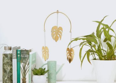 déco monstera