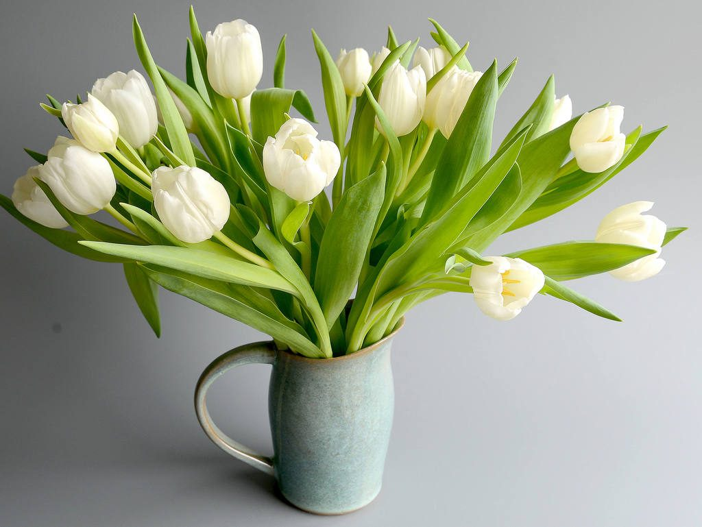 fleurs dans pichet