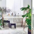 salle de bain tropicale