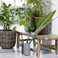 Le charme du bois brut en 10 inspirations - Joli Place