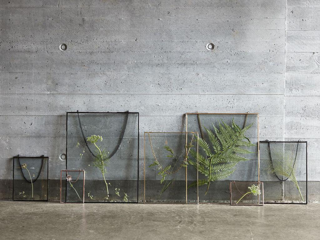 Où acheter un herbier à afficher sur le mur - Joli Place