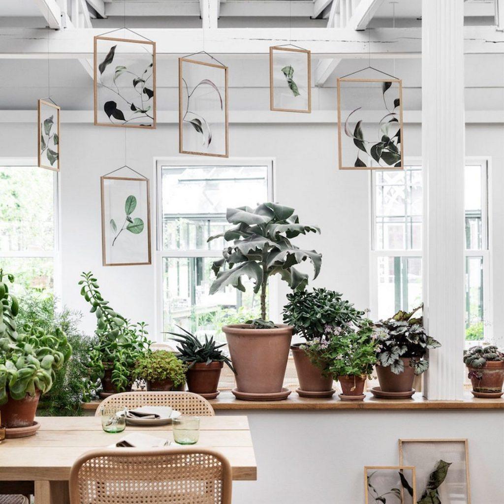 Deco Cadre Photo Mur où acheter un herbier à afficher sur le mur - joli place