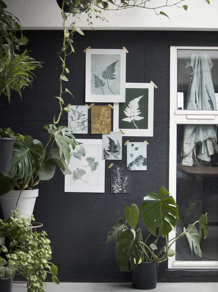 L'univers botanique de Pernille Folcarelli - Joli Place