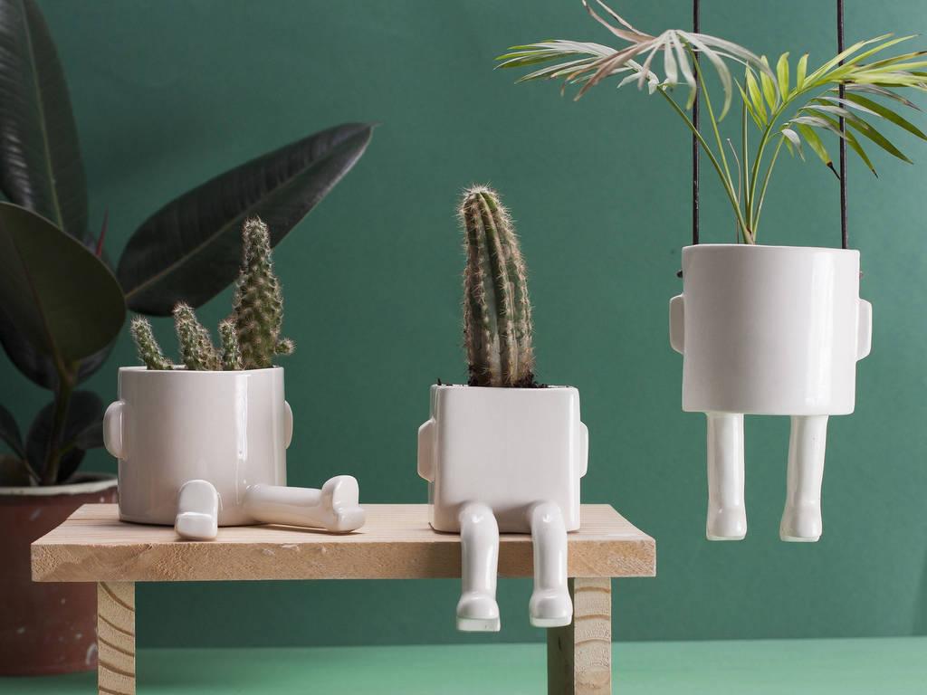 15 cadeaux pour green addict - Joli Place