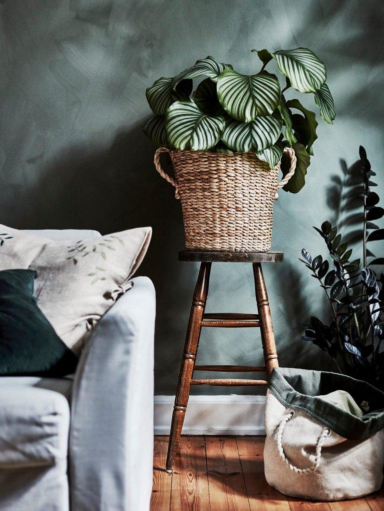 Botanisk, la nouvelle collection capsule Ikea - Joli Place