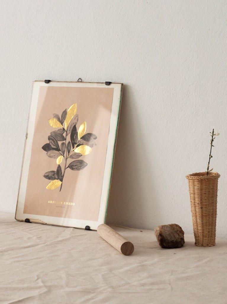 Les affiches botaniques d'Atelier Arminho - Joli Place