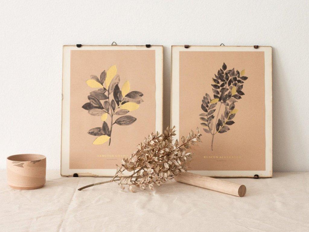 Les affiches botaniques d'Atelier Arminho