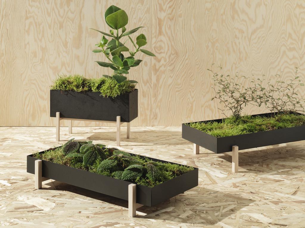 jardinière de table