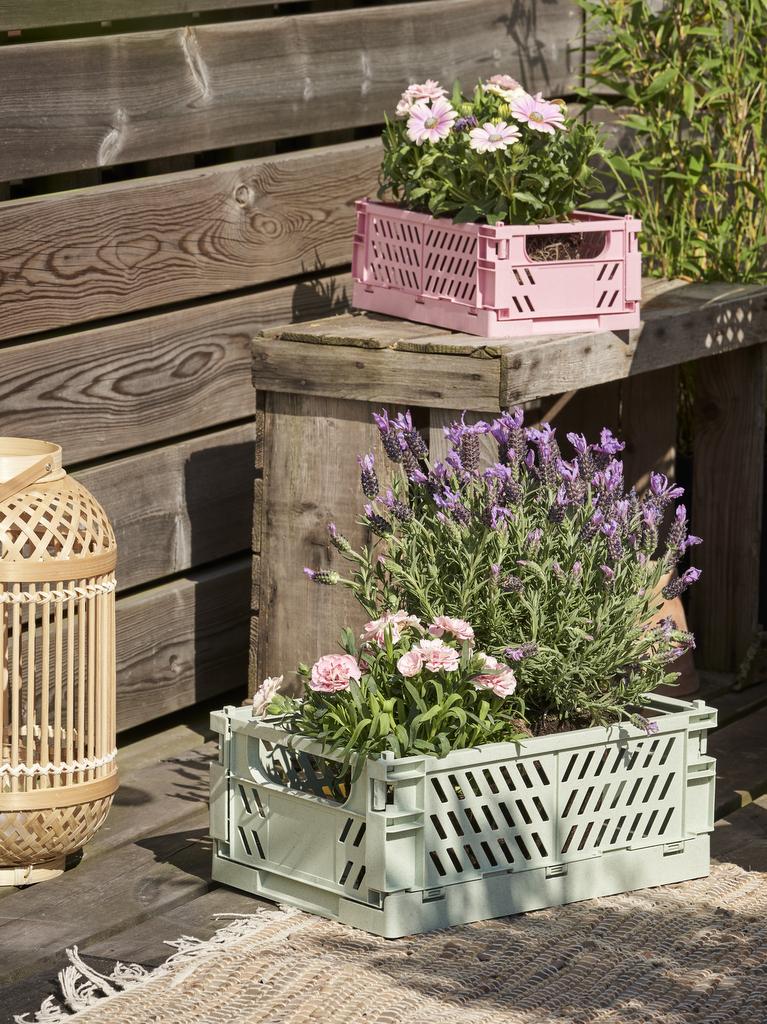 jardinière originale